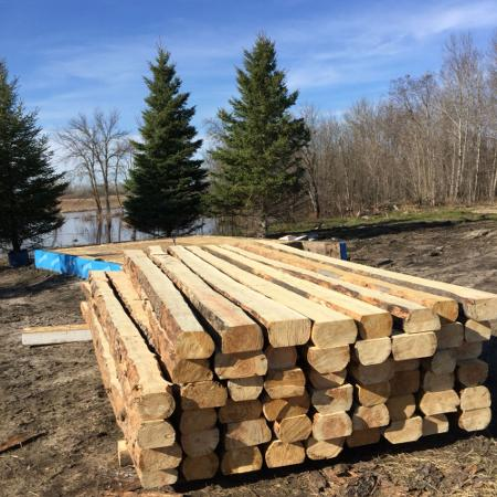 Logs for 16 x 16 cabin. for sale  Canada