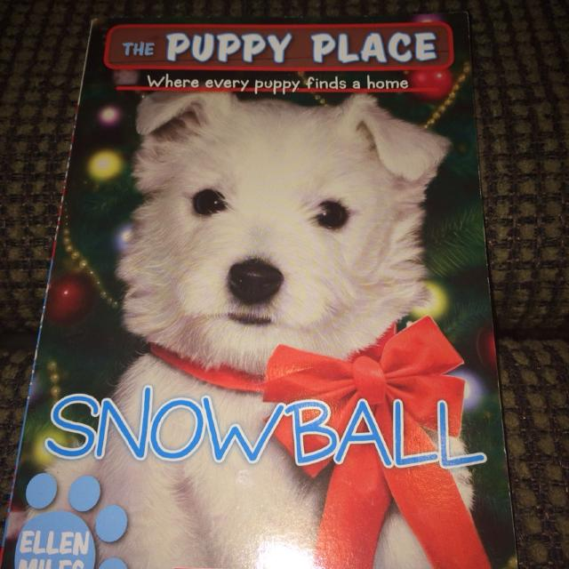 Best The Puppy Place Snowball 4 For Sale In Ozark Missouri For 2019