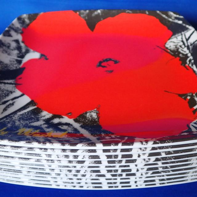 Best andy warhol red poppies flowers precidio melamine plastic andy warhol red poppies flowers precidio melamine plastic plates lot of 10 mightylinksfo