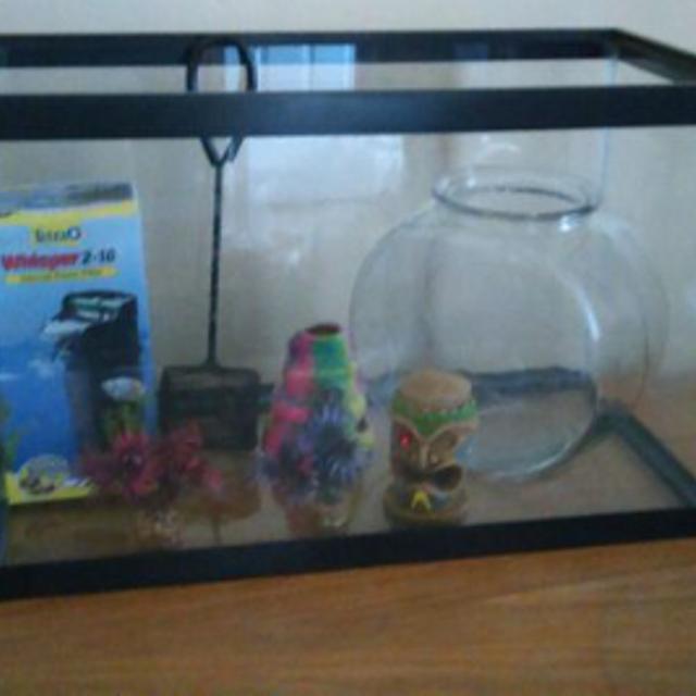 10 Gallon Fish Tank w/Accessories