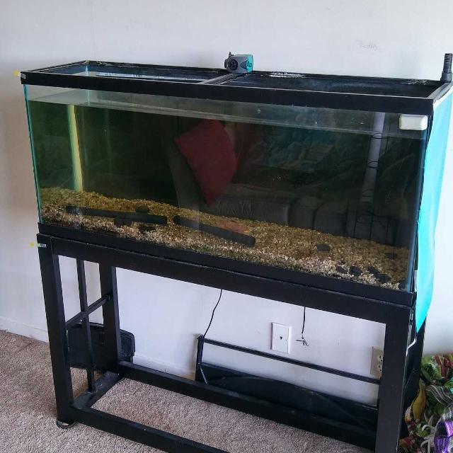 Best 50 gallon fish tank for sale in syracuse new york for 50 gallon fish tank