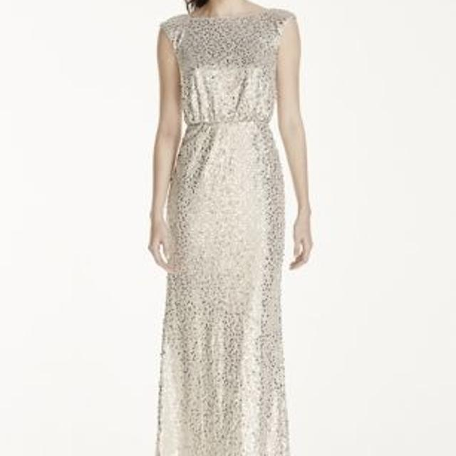 4103837212318 Best Price Drop - $75! Silver David's Bridal Long Sequin Blouson  Bridesemaid Dress for sale in Yorkville, Ontario for 2019