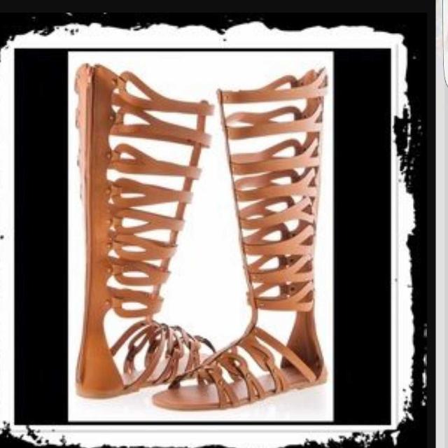 70b7c94488b Best Ashley Stewart Gladiator Sandals for sale in McDonough