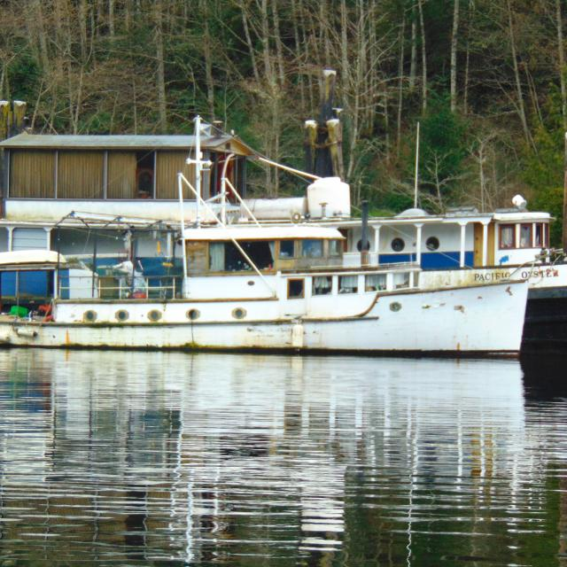 Best Converted Tug Boat For Sale Its On Saltspring Isl For