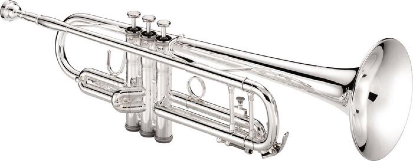 Silver Trumpets For Sale : best in search of a silver trumpet for sale in cecil county maryland for 2019 ~ Hamham.info Haus und Dekorationen