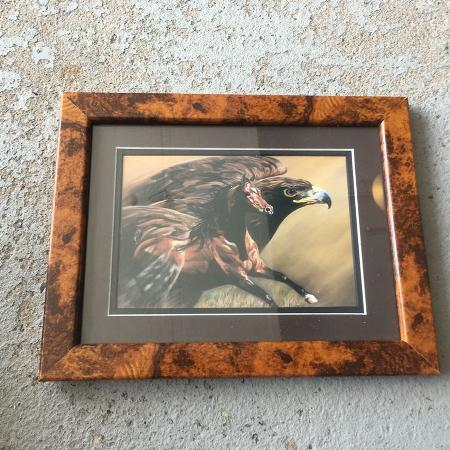 Horse and Eagle Picture/Frame for sale  Canada
