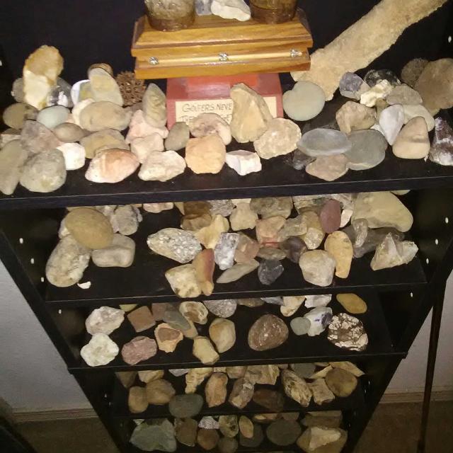 Several different fossils crystals minerals collectors contact