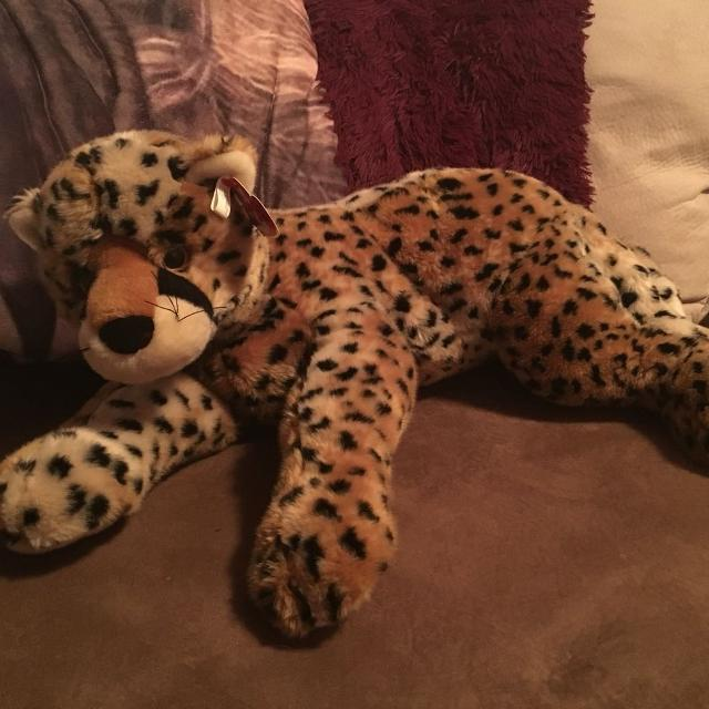 0adb3d1e6e7 Find more Giant Limited Edition Leopard Ty Beanie Baby! Cancer ...