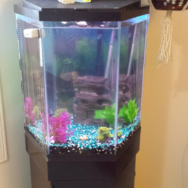 Best 45 Gallon Octagon Shape Aquarium