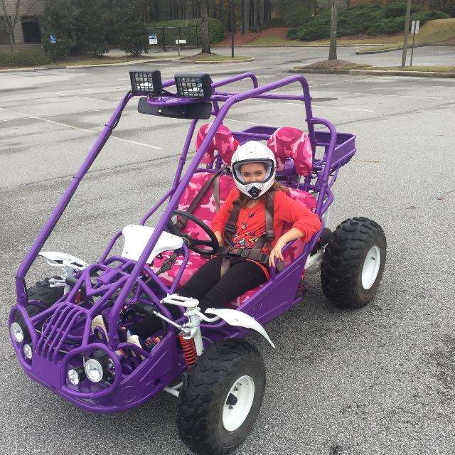 best dune buggy go kart for sale in mountain brook. Black Bedroom Furniture Sets. Home Design Ideas