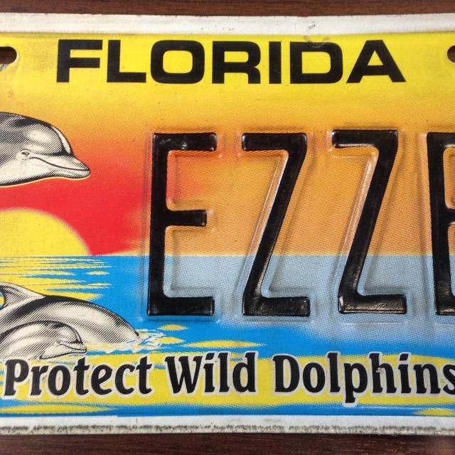 Florida Personalized License Plates >> Florida Personalized License Plate 2006 Protect Wild Dolphins Ezzer Good Condition