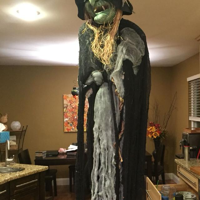 halloween witch decoration also have miscellaneous other decorations