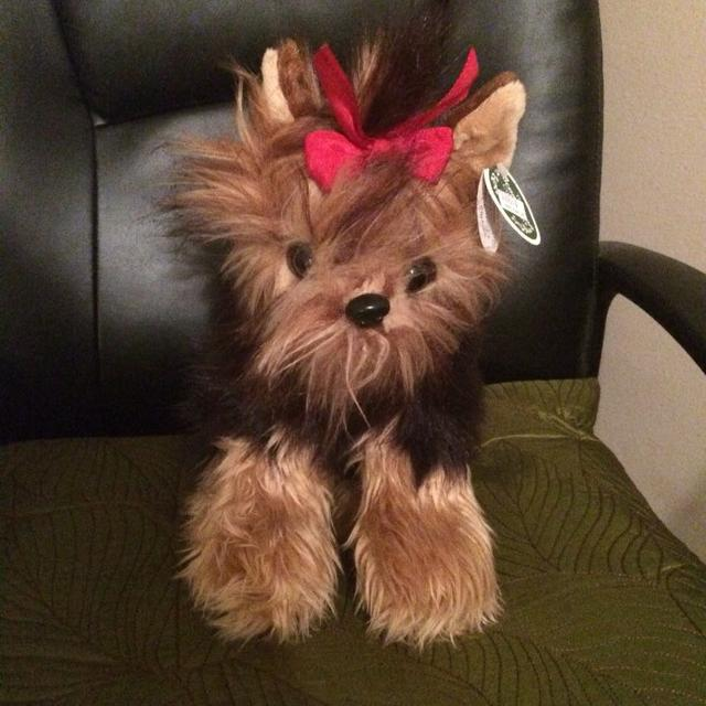 Best 12 Yorkie Stuffed Animal From The Apple Barn For Sale In
