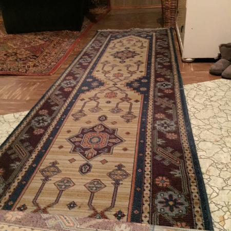 Hall Runner Rug, used for sale  Canada