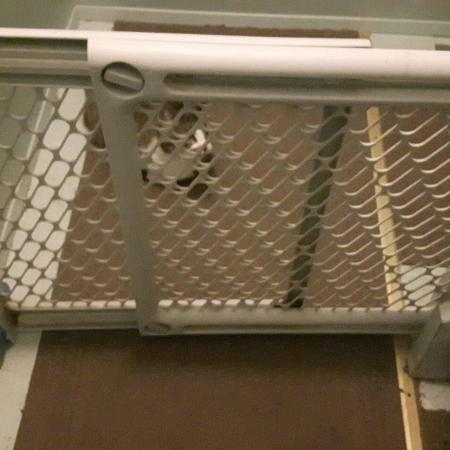 Iso baby gates to deal with cats for sale  Canada