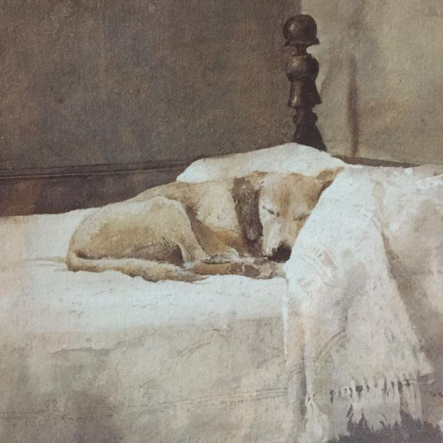 "Find more Andrew Wyeth Professionally Framed/matted Print ""master Bedroom""  Lab Dog On Bed for sale at up to 90% off"
