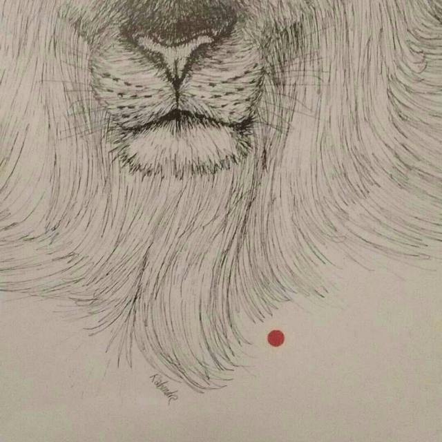 Best Lion Print Rabind Artist For Sale In Gibsons British Columbia