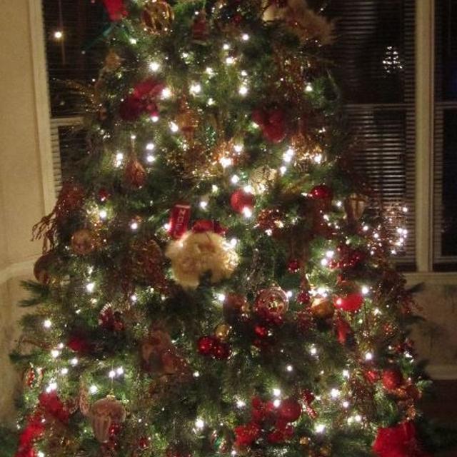 75 ft hobby lobby sprucefir christmas tree - Is Hobby Lobby Open On Christmas Eve