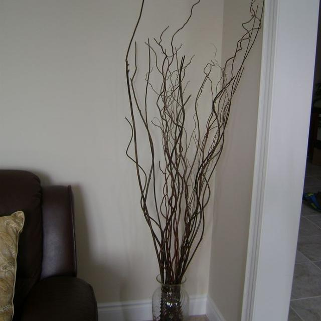 Decorative Sticks With Tall Gl Vase