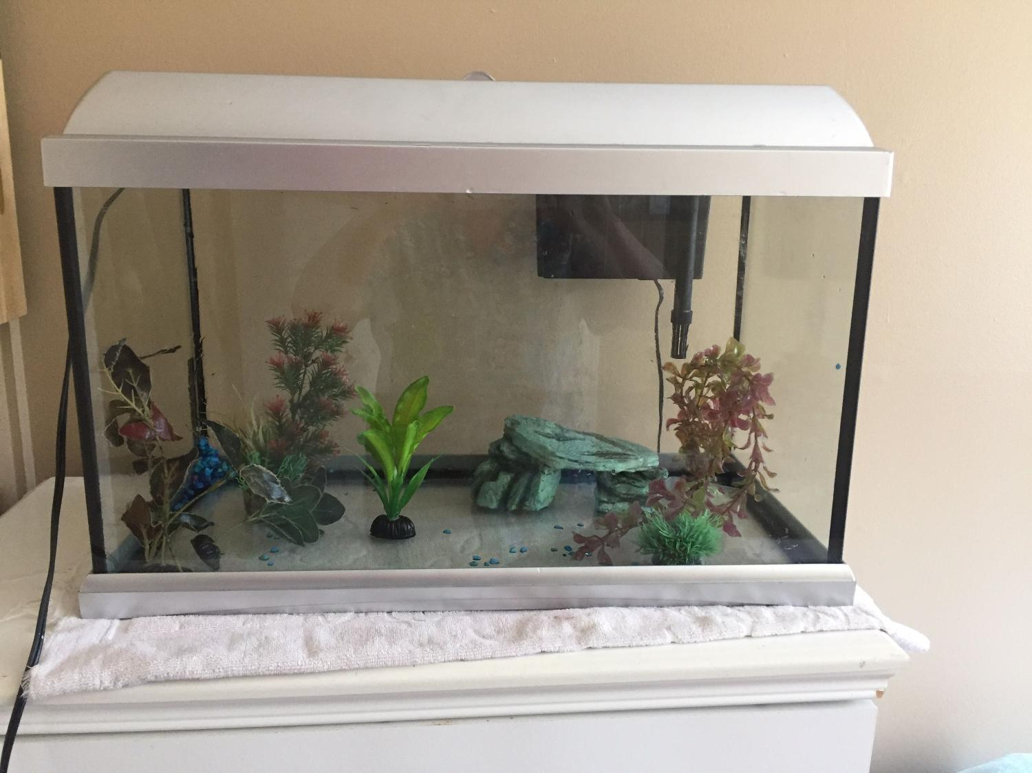 Find more 18 gallon fish tank for sale at up to 90 off for 90 gallon fish tank for sale