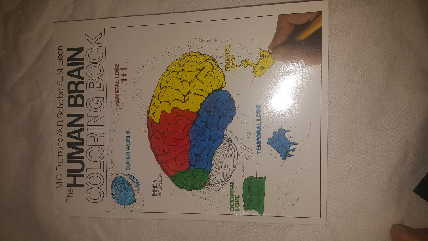 Best Brain Coloring Book For Sale In Charlotte North Carolina For 2018
