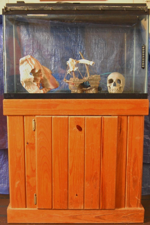 Best 30 Gallon Aquarium Stand Accessories For Sale In