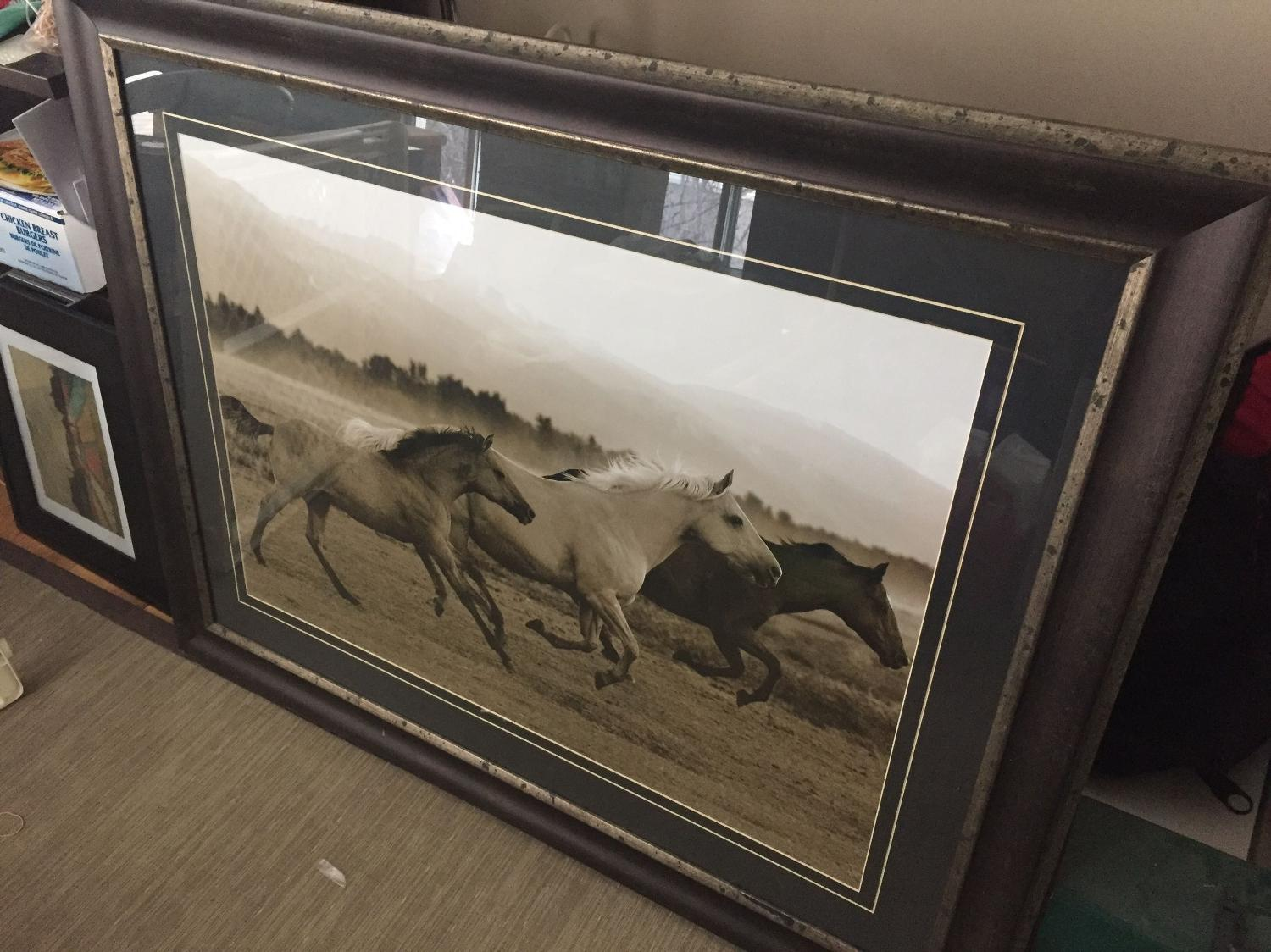 Find More Decorative Framed Horse Picture For Sale At Up To 90 Off Calgary Ab