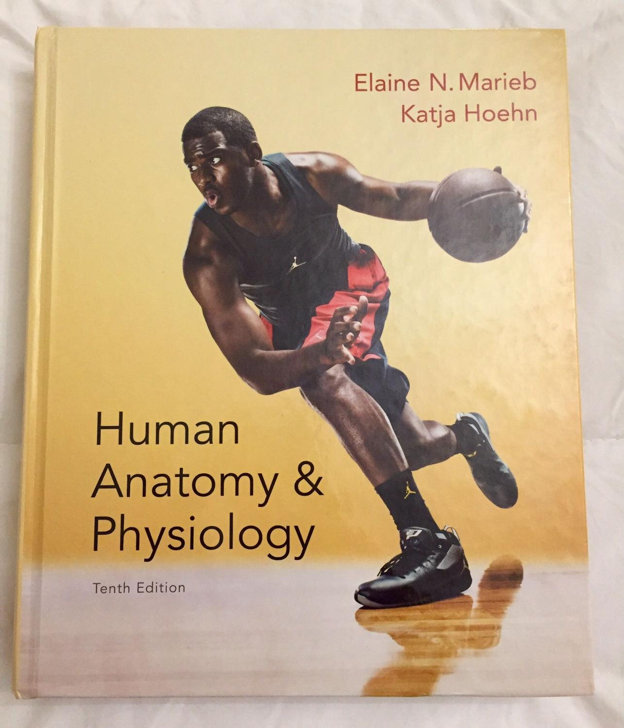 anatomy and physiology lab manual