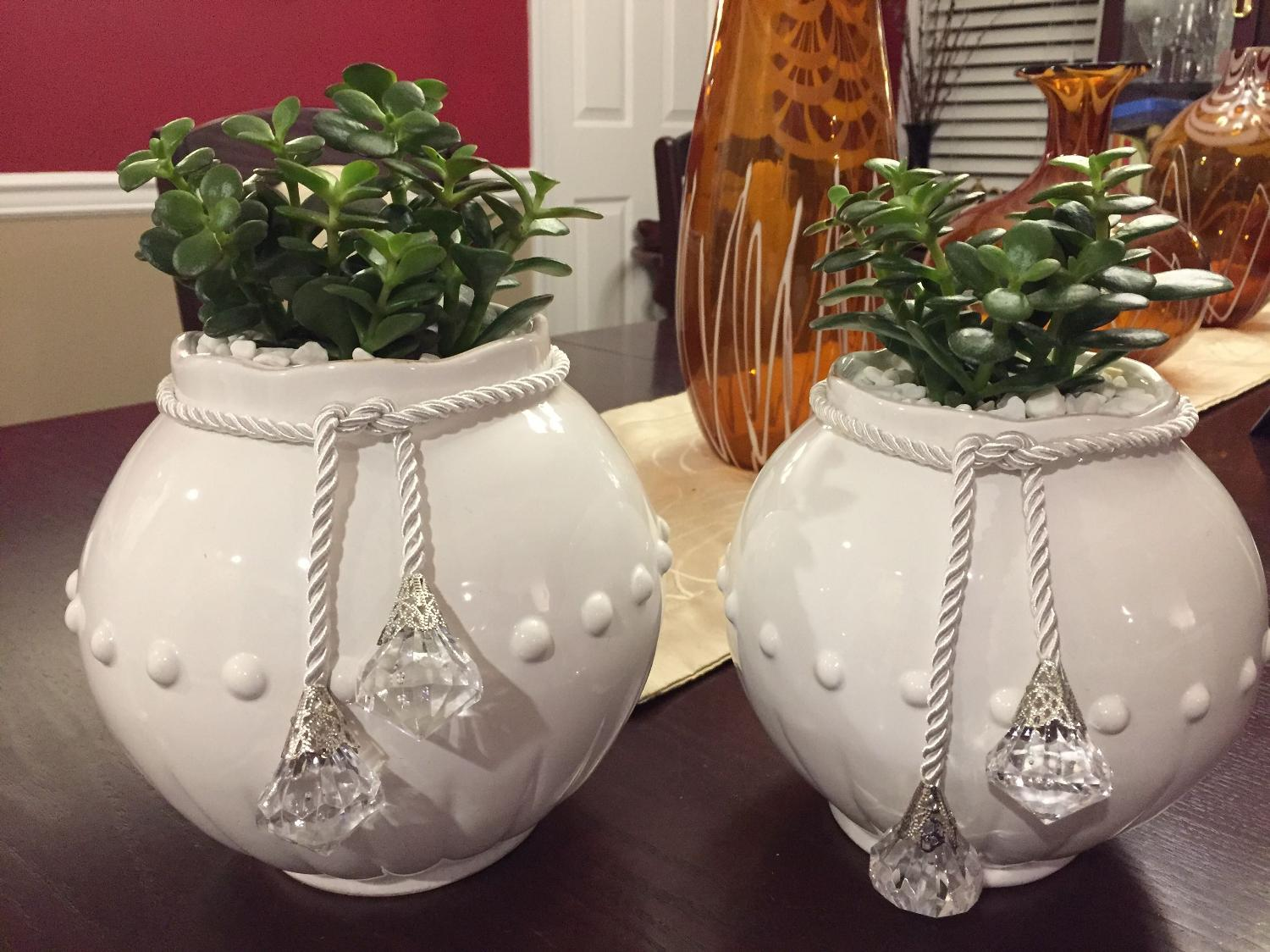 Find More Beautiful Shabby Chic White Ceramic Vase With Easy To Care Jade Succulent Plants With