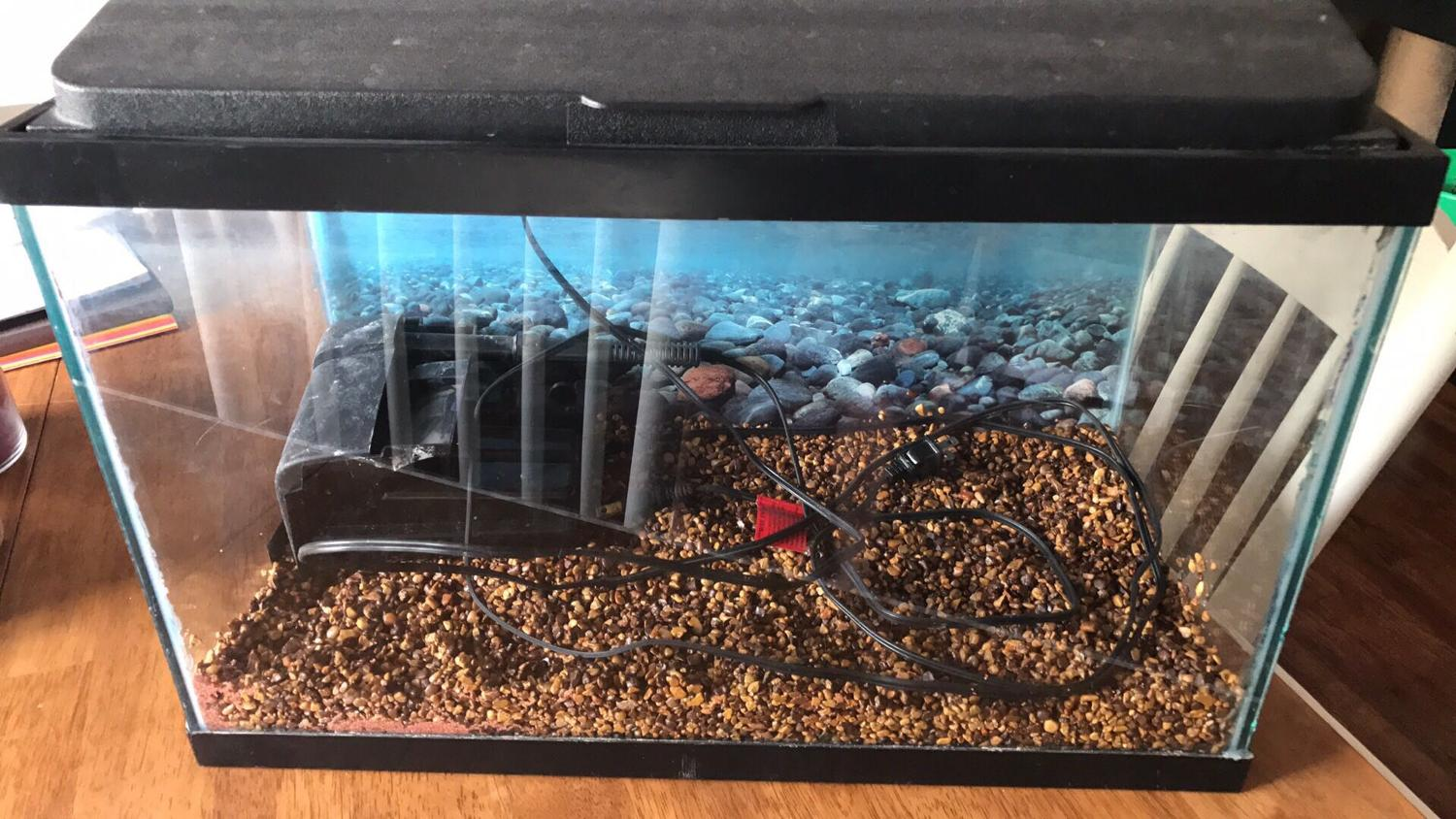 Find more 10 gallon fish tank for sale at up to 90 off for 90 gallon fish tank for sale