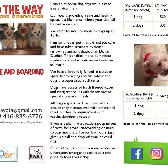 Dog Daycare And Boarding Toronto Scarbough In Scarborough Ontario
