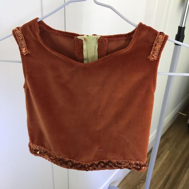 6d438ec1a13 Best Burnt Orange Velvet Crop Top Dance Costume With Sequins for sale in  Ladner, British Columbia for 2019
